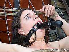 314 In Dengrating Bondage