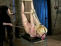 Welcome Alani Pi to HogTied